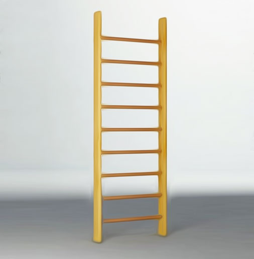 contemporarystandard_gymladder